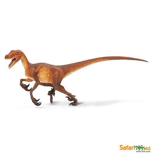 Safari Ltd Velociraptor (Wild Safari Prehistoric World) 299929