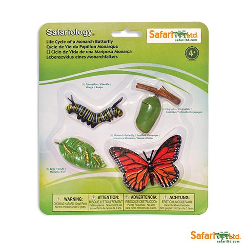 Safari Ltd Life Cycle of a Monarch Butterfly (Life Cycle Series) 622616