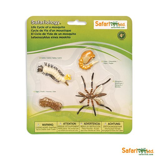 Safari Ltd Life Cycle of a Mosquito (Life Cycle Series) 662616