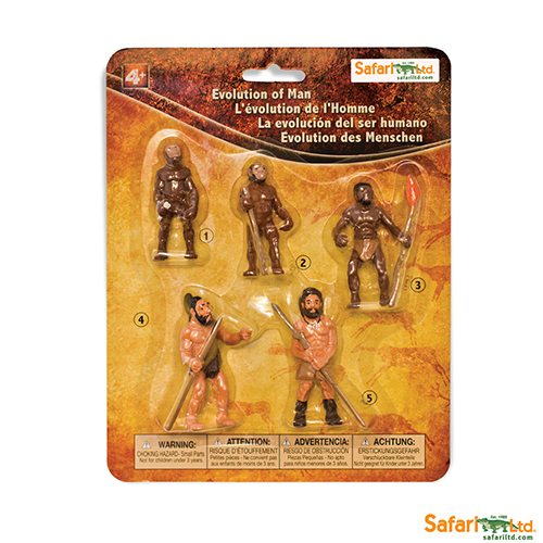 Safari Ltd Evolution of Man (Life Cycle Series)  663816