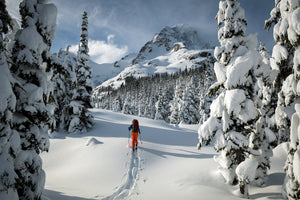 Winner of the Canadian Geographic Photo Contest