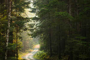 Gulf Island Road Trips - Mike Crane Photography