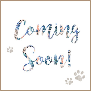 Pet products coming soon to Pipco Pets