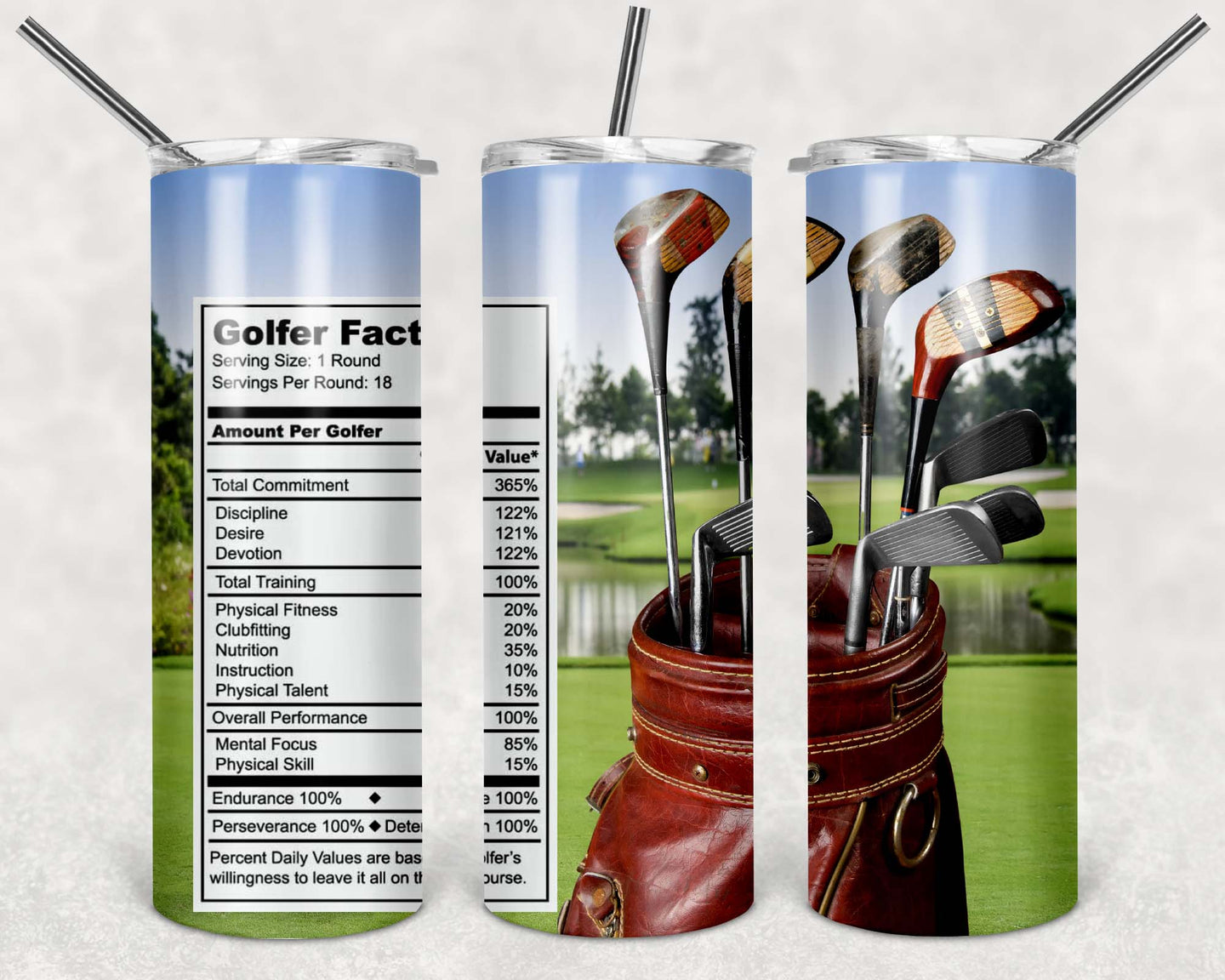 20oz Tumbler - Golfer Facts | Blue Hippo Metal Art