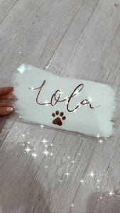 Acrylic pet sign