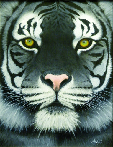 WHITE BENGAL TIGER / Original Canvas Painting - By Andy Habib