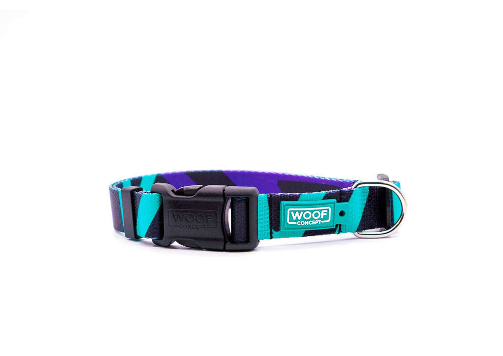 DISCO 2 | DOG COLLAR