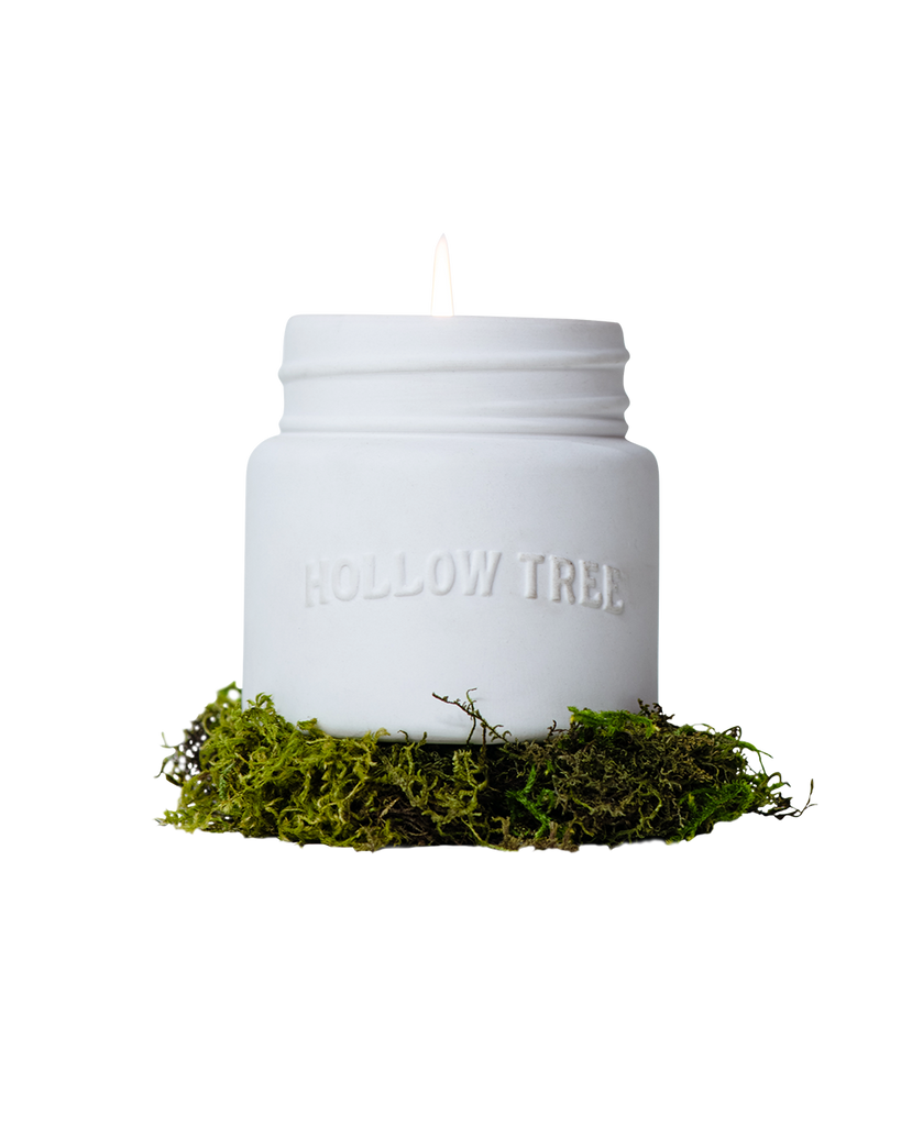 HOLLOW TREE CANDLE - SERIES: LIBRARY OF TREES