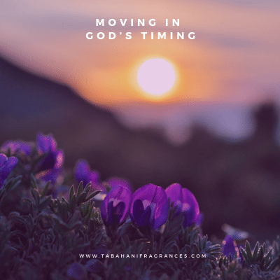 Moving in God's Timing