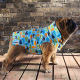 Boys English Bulldog Raincoat (Whale fabric)