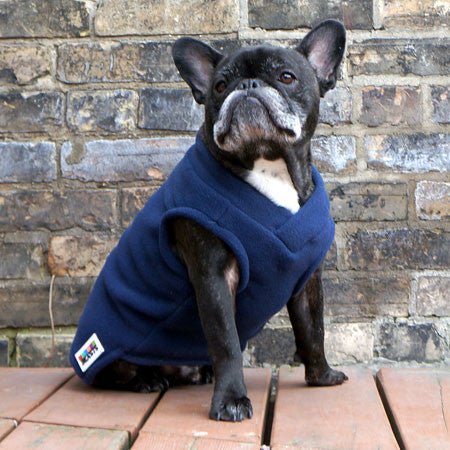 Boys Vest - Navy Blue - French Bulldog Pug Fleece Sweater