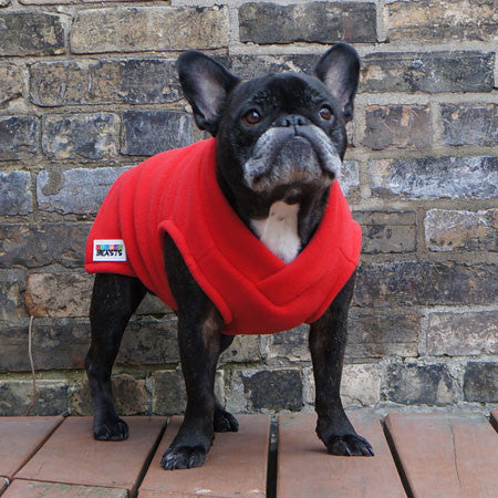 Boys Vest - Red - French Bulldog Pug Fleece Sweater