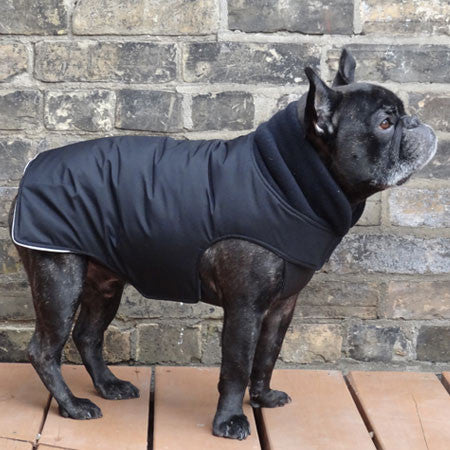 Boys Winter Dog Coat - Black