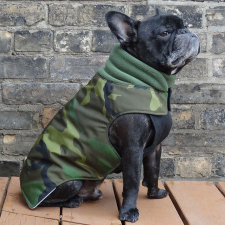 Boys Winter Dog Coat - Camouflage