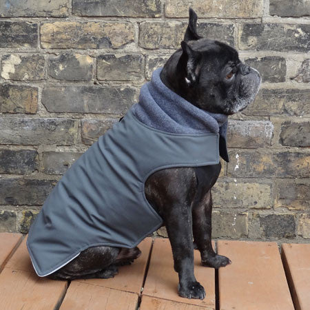 Boys Winter Dog Coat - Grey