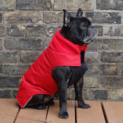 Boys Winter Dog Coat - Red