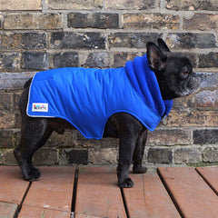 Boys Winter Dog Coat - Royal Blue