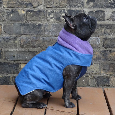 Denim Girls Dog Coat