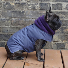 Girls Winter Dog Coat - Storm Purple