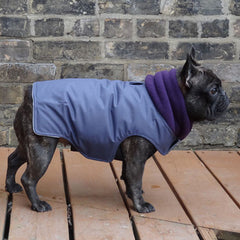 Storm Purple Girls Dog Coat