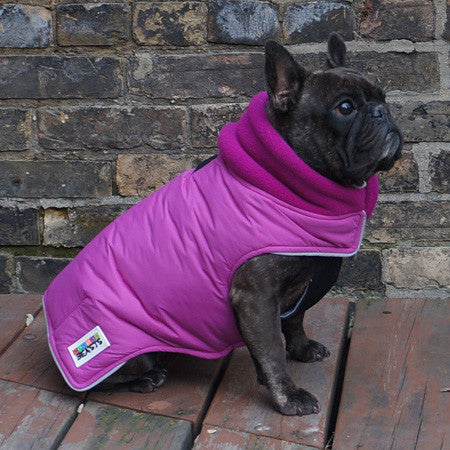 Girls Winter Dog Coat - Fuschia