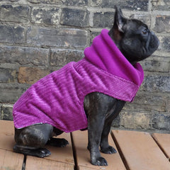 Fuchsia Corduroy Dog Coat