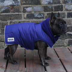 Girls Winter Dog Coat - Violet