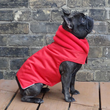 Red Girls Dog Coat