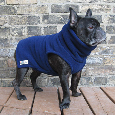Boys Turtleneck - Navy Blue - French Bulldog Pug Fleece Sweater