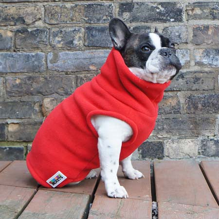 Boys Turtleneck - Red - French Bulldog Pug Fleece Sweater