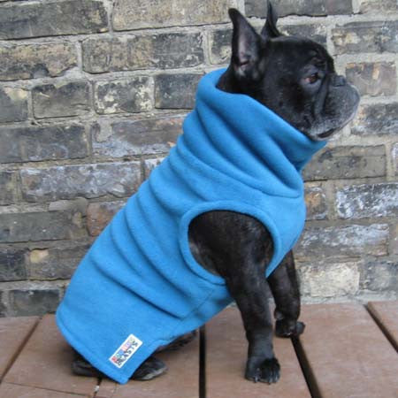 Boys Turtleneck - Sky Blue - French Bulldog Pug Fleece Sweater