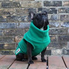Girls Turtleneck - Emerald Green - French Bulldog Pug Fleece Sweater