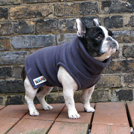 Girls Turtleneck - Grey - French Bulldog Pug Fleece Sweater