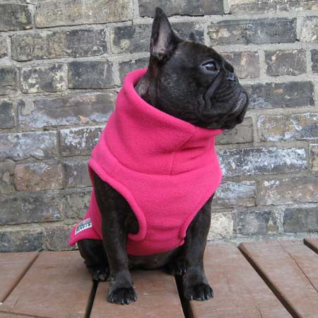 Girls Turtleneck - Hot Pink - French Bulldog Pug Fleece Sweater