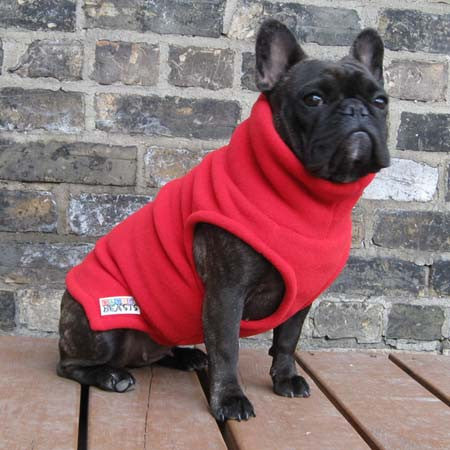 Girls Turtleneck - Red - French Bulldog Pug Fleece Sweater