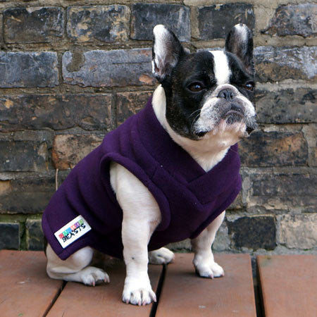 Girls Turtleneck - Violet - French Bulldog Pug Fleece Sweater
