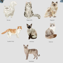 Load image into Gallery viewer, Cat Print Birthday - Wildfig & Co