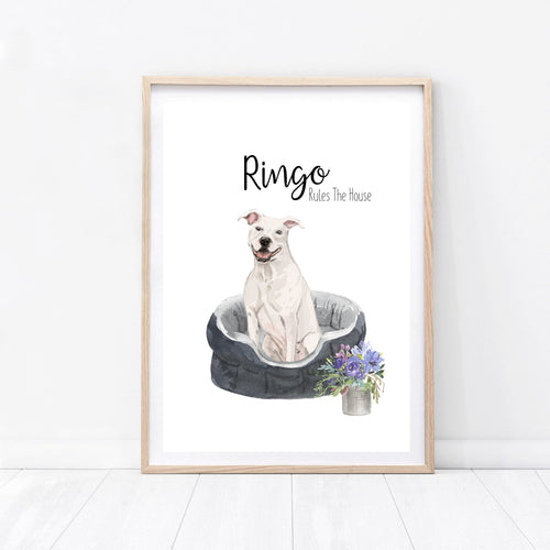 Dog Bed Print - Wildfig & Co