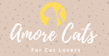 Amore Cats