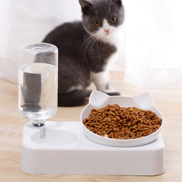 Modern Cat Food Bowl with Water Dispenser