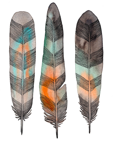 Native Feathers Art Print