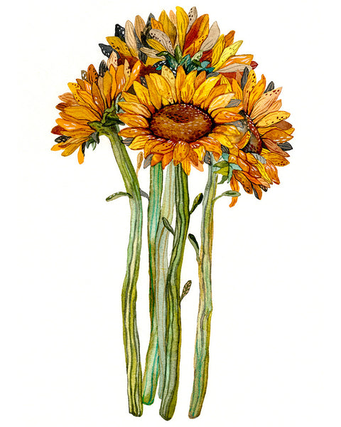 Sunflower Bundle Art Print