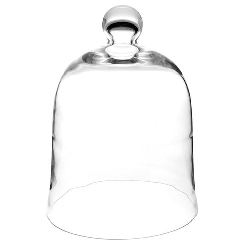 Plymor Brand Bell Jar Glass Display Dome Cloche
