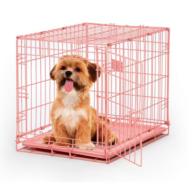 MidWest Single Door iCrate Metal Dog Crate, 24""