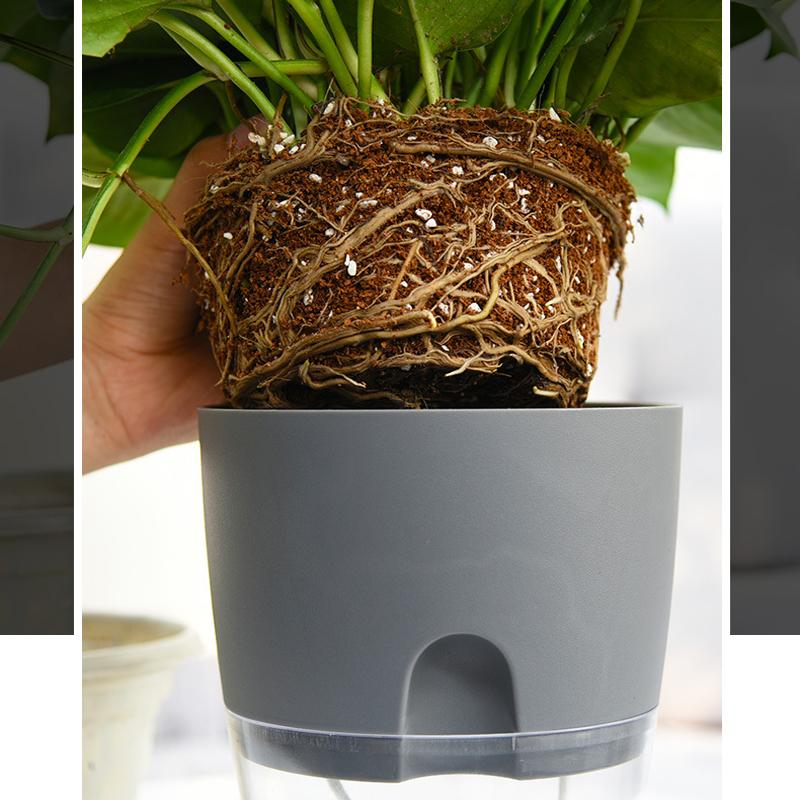Self-watering Eco Pot