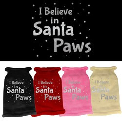 Mirage - I Believe In Santa Paws Dog Sweater