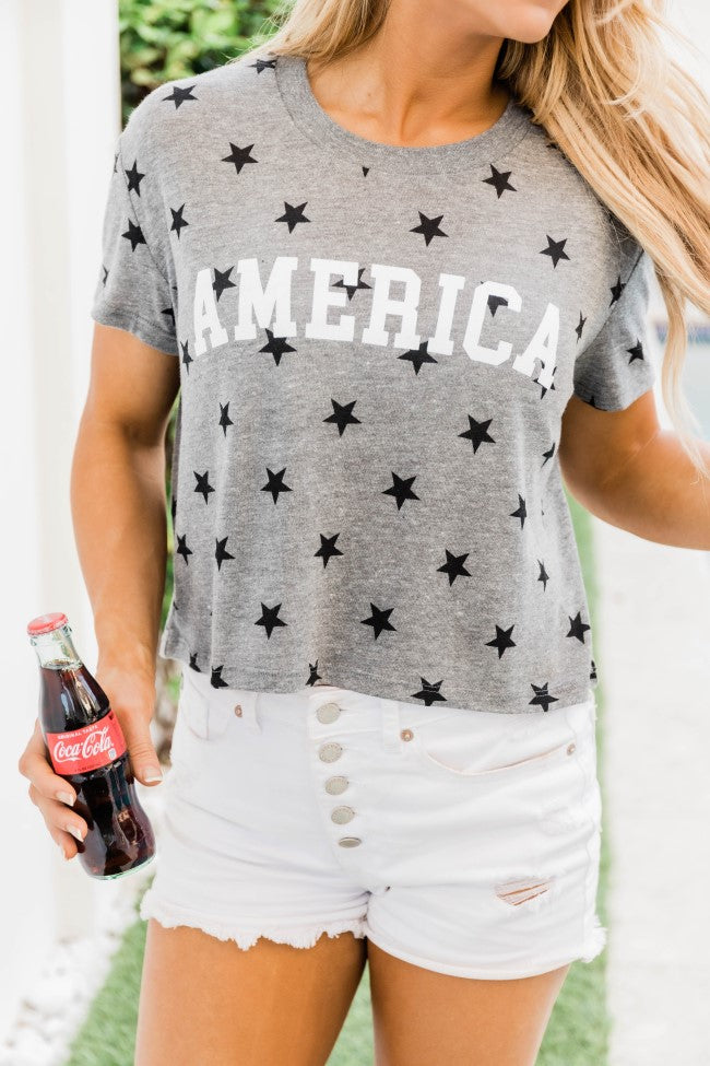 America Block Cropped Graphic Tee Grey