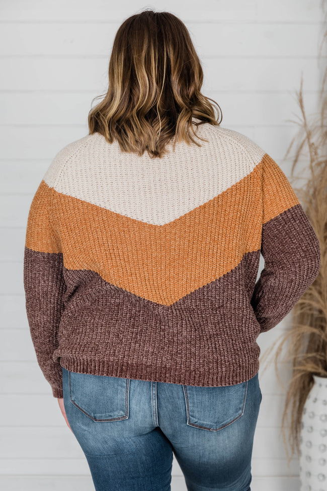 Tell You My Story Brown Colorblock Sweater
