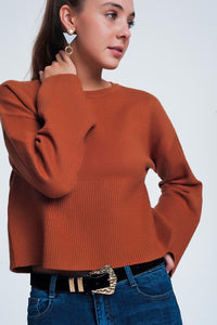 Camel Sweater With Long Sleeves