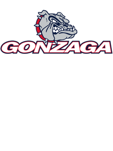 Official NCAA Gonzaga Bulldogs RYLGON06 Baja French Terry V-Neck Hooded Pullover